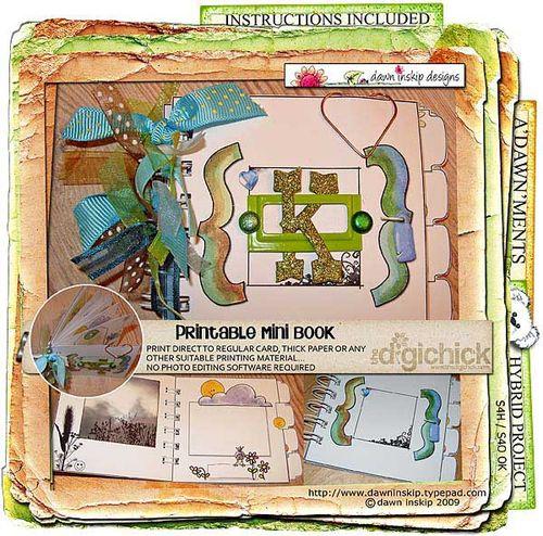 Dinskip-minibook-preview
