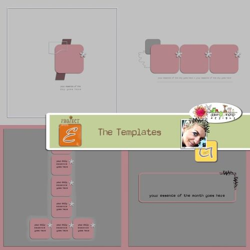 Projecte-thetemplates-preview-web
