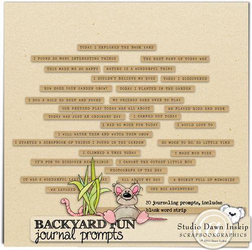 Dinsk_backyard_prompts_prev_web