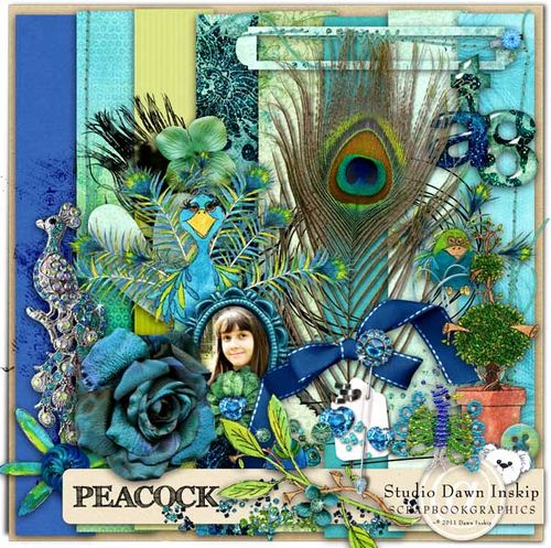 Dinsk_peacock_prev_web