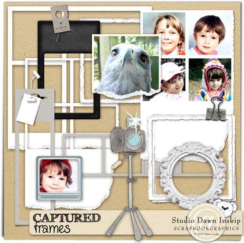 Dinsk_captured_frames_prev_web