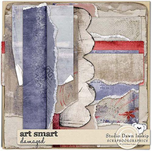 Dinsk_artsmart_damaged_prev_web