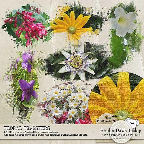 Dinsk_floraltransfers_prev_web