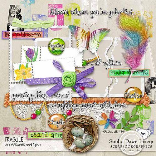 Dinsk_fragile_accessories_prev_web