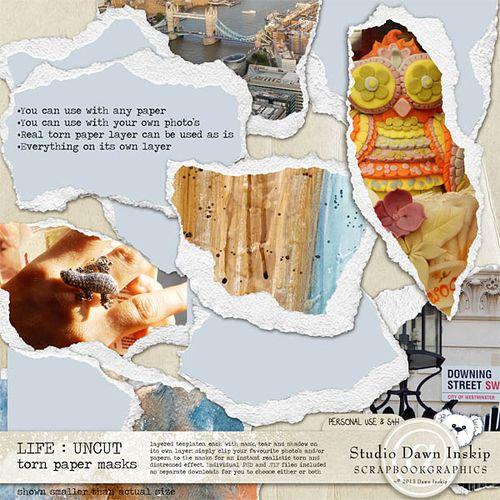 Dinsk_life_uncut_tornpapermasks_prev_web