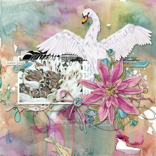 Swanlake-dawn2