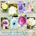 Watercolour Journal Fller Cards