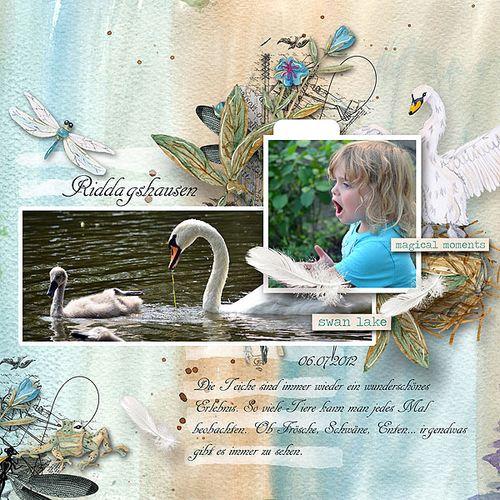 Swanlake-jacqueline