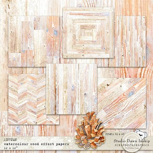 Dinsk_autumn_wcol_wood_effect_pp_prev_web