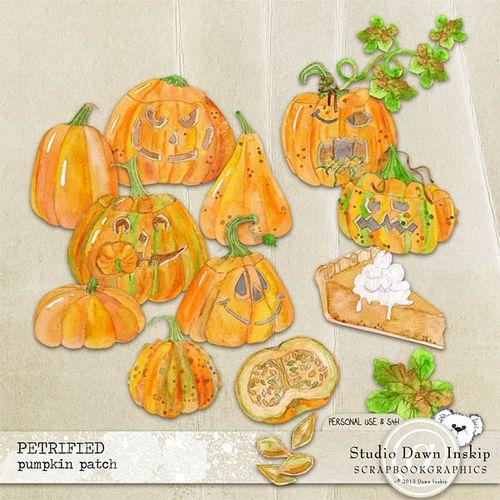 Dinsk_petrified_pumpkinpatch_prev_web