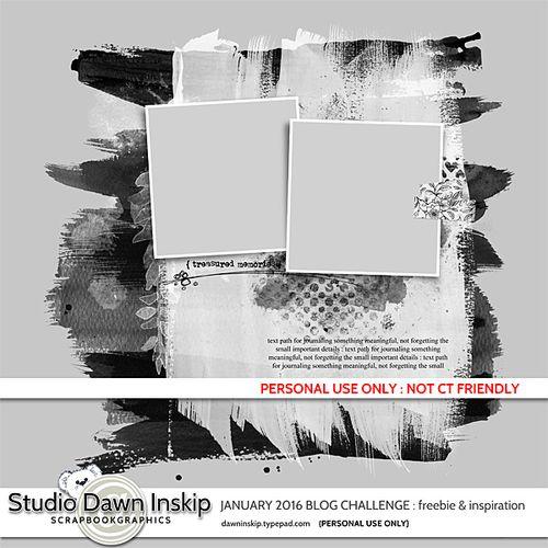 Dinskip_challenge_JAN2016_prev