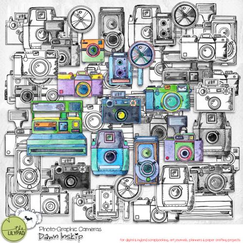 Dinskip_PGraphic_cameras_prev