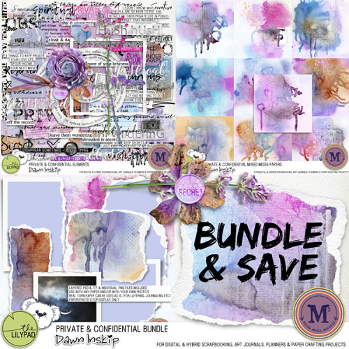 Dinskip_P&C_bundle_prev