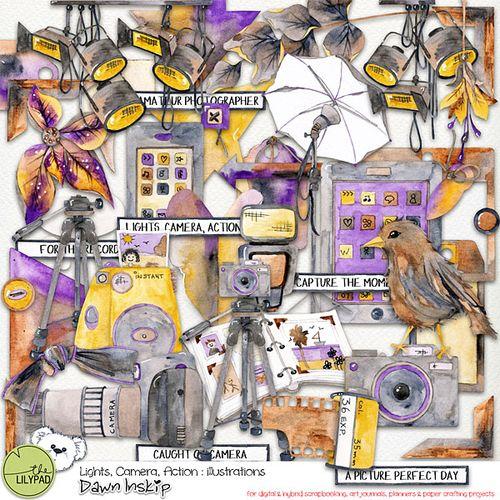 Dinskip_LCA_illustrations_prev