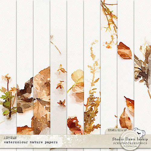 Dinsk_autumn_wcol_nature_pp_prev2
