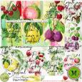 A Slice of Summer Fruity {July17 M3}