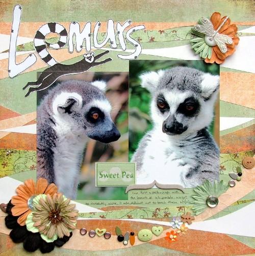 Lemurs_1_2