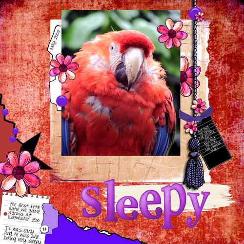 Sleepy_1