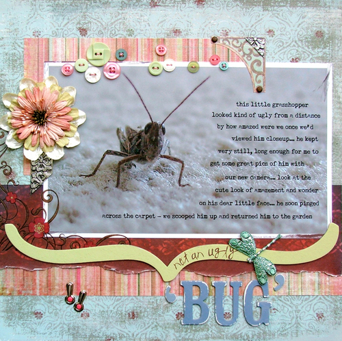 Not_an_ugly_bug_700x700_2