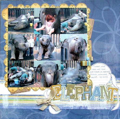 Elephant_700x700