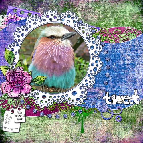 Tweet_700