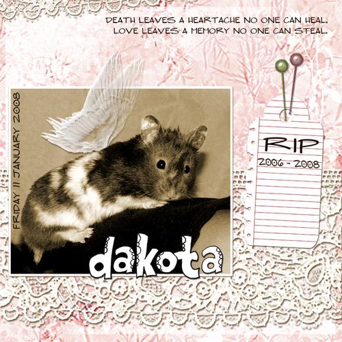 Rip_dakota_700