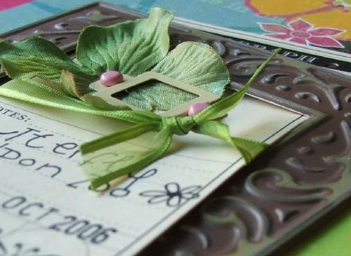 Butterfly_closeup_blog